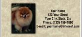 Pomeranian cards