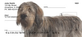 bearded collie personal checks