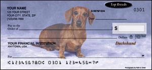 dachshund-checks
