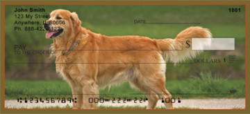 Golden Retriever Checks