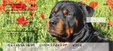 rottie checks