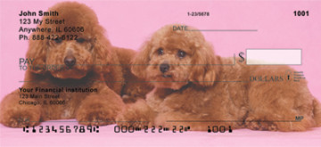 toy poodles-4